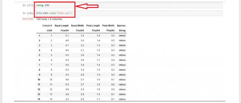 Import and use iris csv dataset in julia